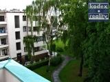 Prostorný zděný byt 2+kk s lodžií s výhledem do parku, Hradec Králové - centrum